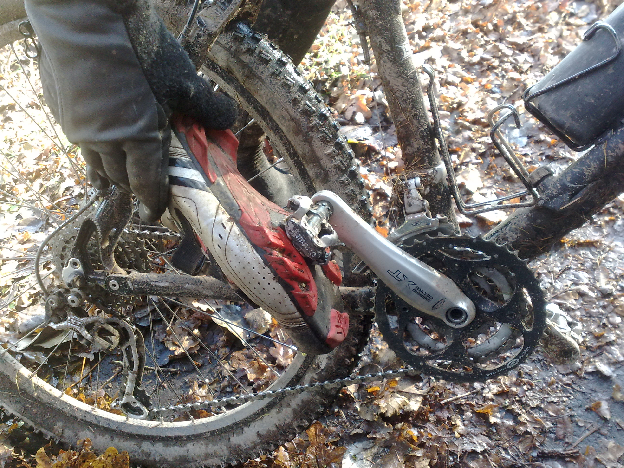 bike sprüche Geburtstagssprüche Biker,  | GloriaoycRodriguez site bike sprüche